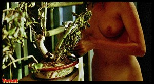 Jane March, Lisa Faulknerin The Lover (1992) Jvpunzcw3af2