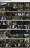 Mädchen: stillgestanden / Wenn Mädchen zum Manöver blasen (1975) [ German sex comedy ]