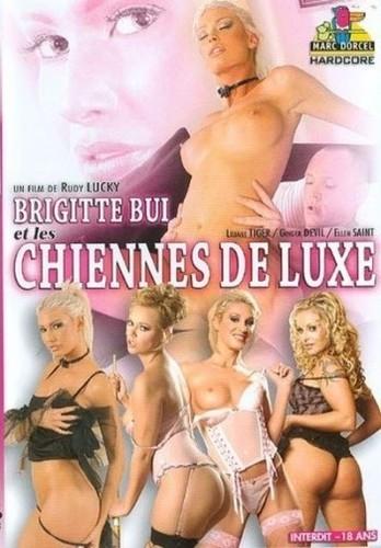 Brigitte Bui et les chiennes de luxe