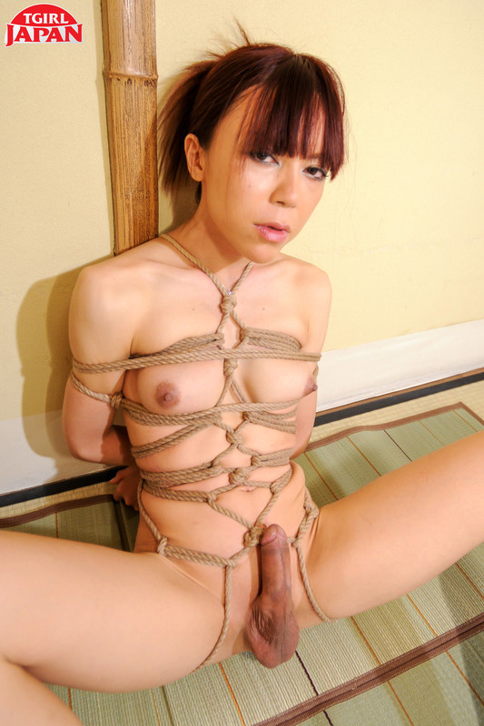 Pretty Seira Mikami All Tied Up! Remastered