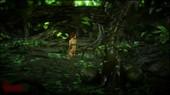 Vaesark - CGS 81 - Wood Elf
