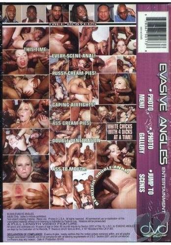 4 x 4 The Leather And Lace Gangbang 2 - Amber Rain, Julie Night, Allura Bond, Cherry Poppens (Evasive-2003)
