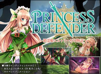 Princess Defender by NineBirdHouse