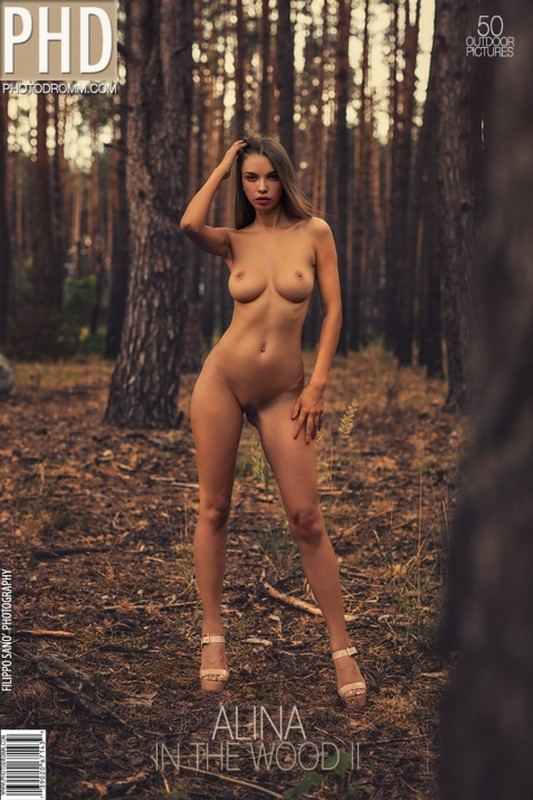Alina - In The Wood 2 - 46 pictures - 3000px (22 Feb, 2019)