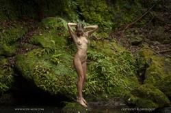 Elly-Nature-Of-Things-x119-9000px-d6v31p1qr5.jpg